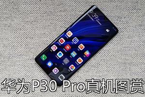 華為P30Pro系列手機報價